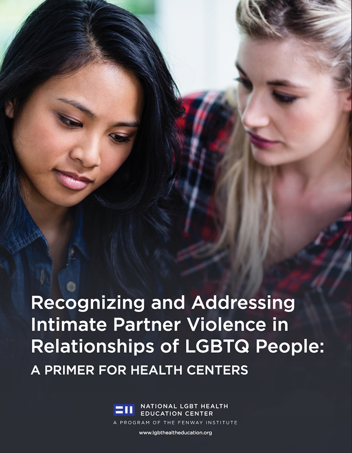 Intimate Partner Violence in Relationships of the LGBTQ People