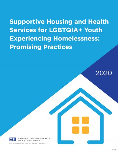 Supportive Housing and Health Services for LGBTQIA+ Youth Experiencing Homelessness: Promising Practices